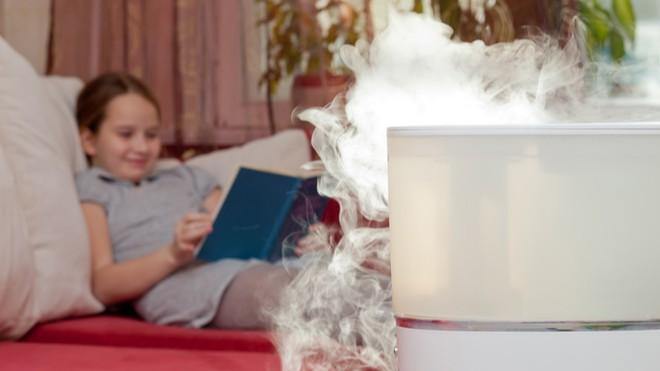 7 Ways to Humidify Dry Air